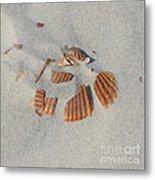 Shell Jigsaw Metal Print