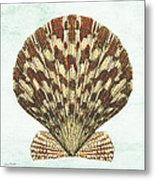 Shell Treasure-d Metal Print