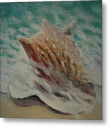 Shell Two - 2 In A Series Of 3 Metal Print