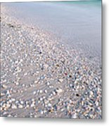 Shells In The Sand Metal Print