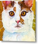 Shelter Sweety Two Metal Print