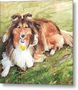 Sheltie On Lawn Watercolor Portrait Metal Print
