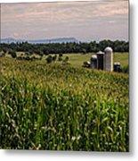 Shenandoah Corn Metal Print