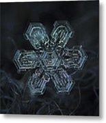 Snowflake Photo - Shine Metal Print