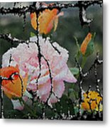 Shinning Roses Photo Manipulation Metal Print