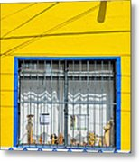 Shop Window - Mexico - Photograph By David Perry Lawrence Metal Print