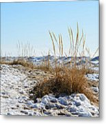 Shore And Ice Metal Print