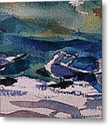 Shoreline Birds Iv Metal Print