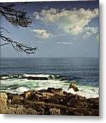 Shoreline View In Acadia National Park Metal Print