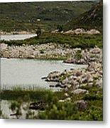 Shores Metal Print by Anthony Bean