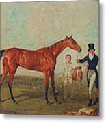 Shoveller Held By Her Trainer Will Chifney Metal Print by Benjamin Marshall