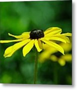 Side View Of A Yellow Flower Metal Print