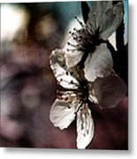 Side View Of White Flowers Metal Print