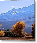 Sierra Autumn Gold Metal Print