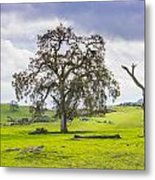 Sierra Foothills And Clouds Metal Print