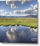 Sierra Valley Wetlands II Metal Print