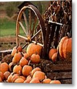 Signs Of Fall Metal Print