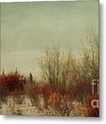 Signs Of Winter Metal Print