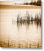 Silence Metal Print by Q's House of Art ArtandFinePhotography