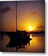 Silence Of Night Metal Print