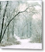 Silence Of Winter Metal Print