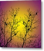 Silhouette Birds Metal Print
