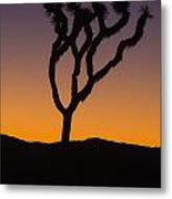 Silhouette Of A Joshua Tree At Sunset Metal Print