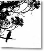 Silhouette Of Singing Common Blackbird In A Tree Metal Print by Stephan Pietzko