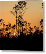 Silhouette Of Trees At Sunset Metal Print
