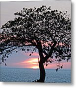 Silhouette Sunset Metal Print