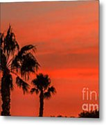 Silhouetted Palm Trees Metal Print