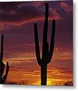 Silhouetted Saguaro Cactus Sunset  Arizona State Usa Metal Print