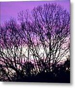 Silhouettes Against Pink Skies Metal Print