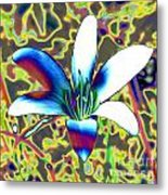 Silly Lilly Metal Print
