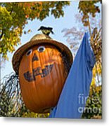 Silly Scarecrow Metal Print
