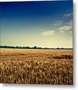 Silo In Wheat Metal Print