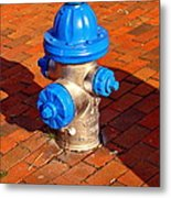Silver And Blue Hydrant Metal Print