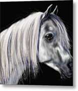 Grey Arabian Mare Painting Metal Print