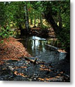 Silver River Channel In Autumn Metal Print