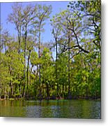Silver River Florida Metal Print