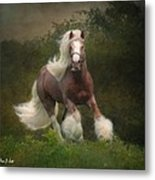 Simon And The Storm Metal Print