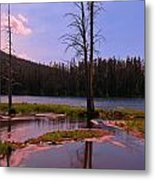 Simple Beauty Of Yellowstone Metal Print