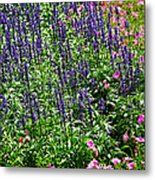 Simple Beauty - Purple And Pink Metal Print