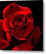 Simply Red Rose Metal Print