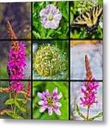 Simply Summer Wildflowers Metal Print