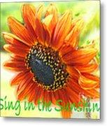 Sing In The Sunshine Metal Print