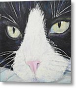 Sissi The Cat 2 Metal Print
