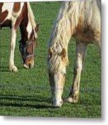 Sister Horses Metal Print