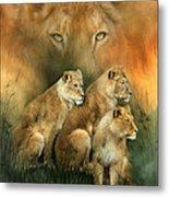 Sisterhood Of The Lions Metal Print