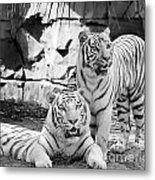 Sisters Black And White Metal Print
